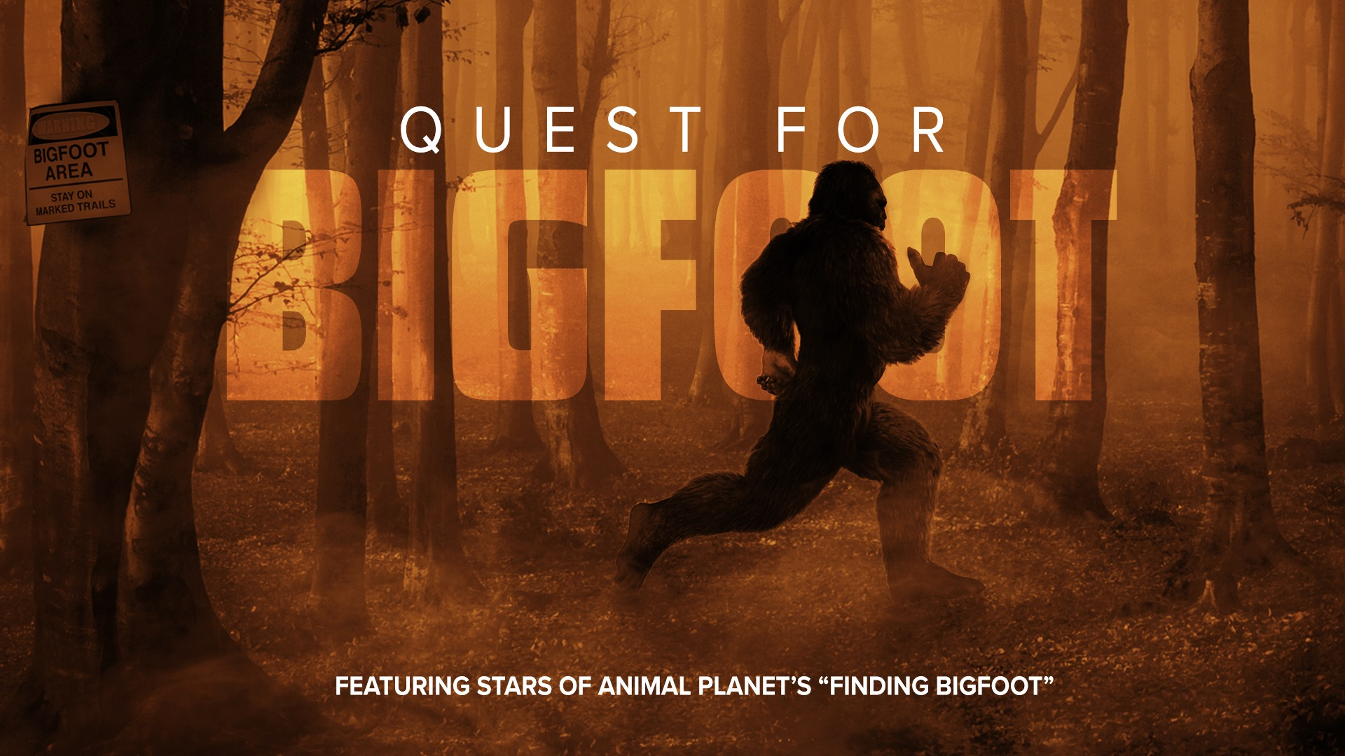 Quest for Bigfoot